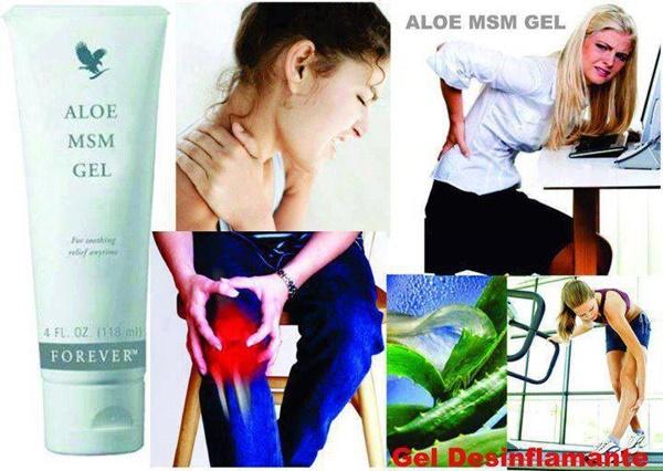 Khasiat Aloe Vera - Forever Living Aloe MSM Gel