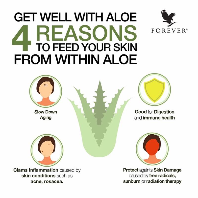 Khasiat Aloe Vera | 4 Sebab Anda Patut Minum Aloe Vera Gel Setiap Hari