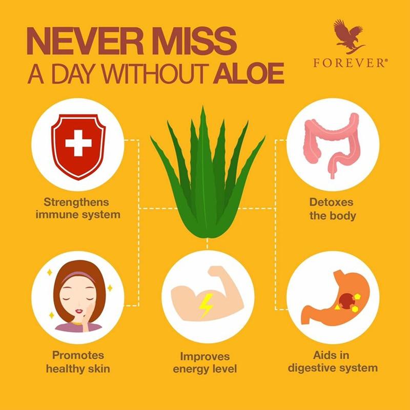 Khasiat Aloe Vera | 5 Manfaat Aloe Vera Yang Anda Perlukan Setiap Hari