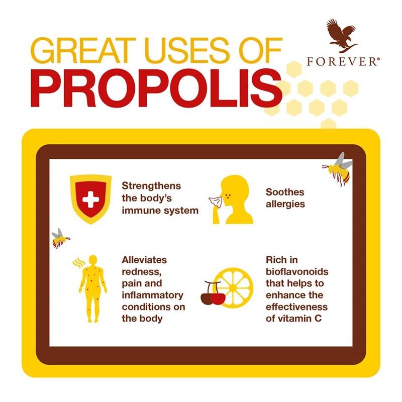 Khasiat Bee Propolis | 4 Manfaat Bee Propolis Untuk Kesihatan Manusia