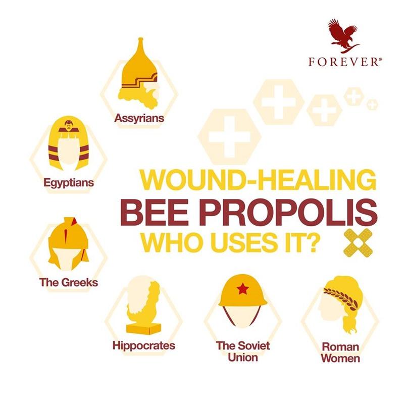 Khasiat Bee Propolis | Manfaat Bee Propolis Untuk Penyembuhan Luka Dipercayai Pelbagai Tamadun Dunia