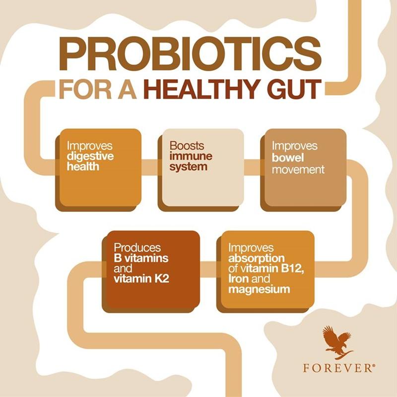 Khasiat Probiotik | 5 Manfaat Probiotik Untuk Kesihatan Usus Anda