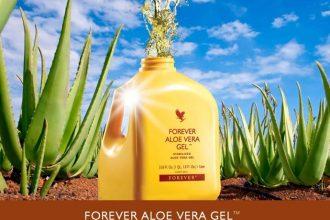 Khasiat Aloe Vera Forever Living Products